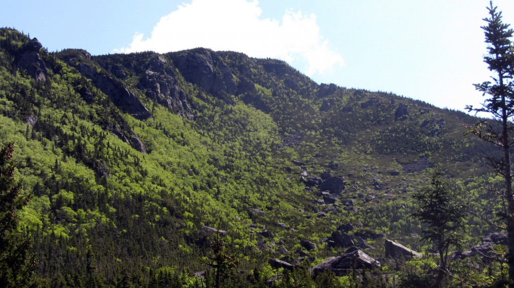 An awesome look at the daunting Carter Dome from the Carter Notch Hut.